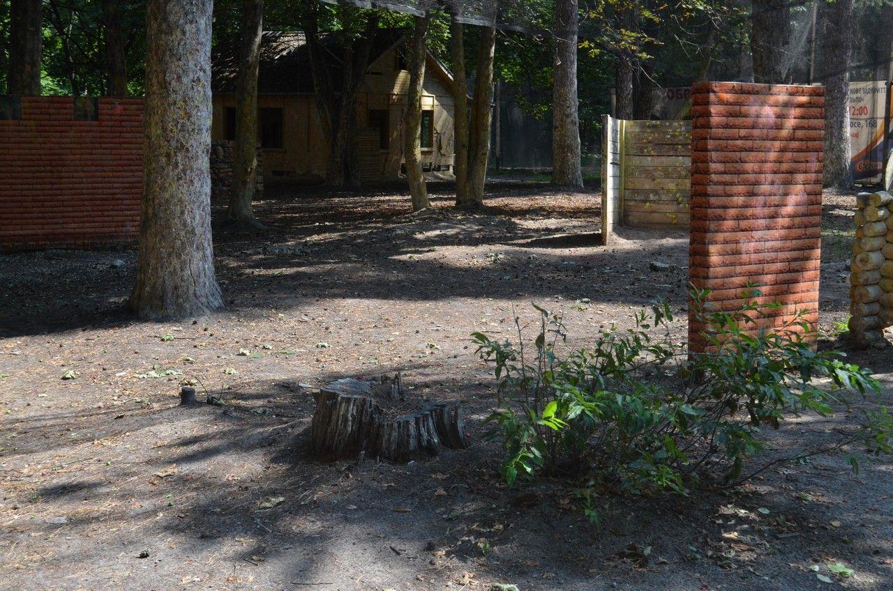 Пейнтбольная площадка Деревня (лето) - фото 02