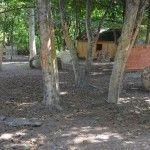 Пейнтбольная площадка Деревня (лето) - фото 03