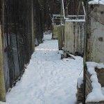 Пейнтбольная площадка Деревня (зима) - фото 03