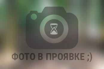 pl_no-foto_leto