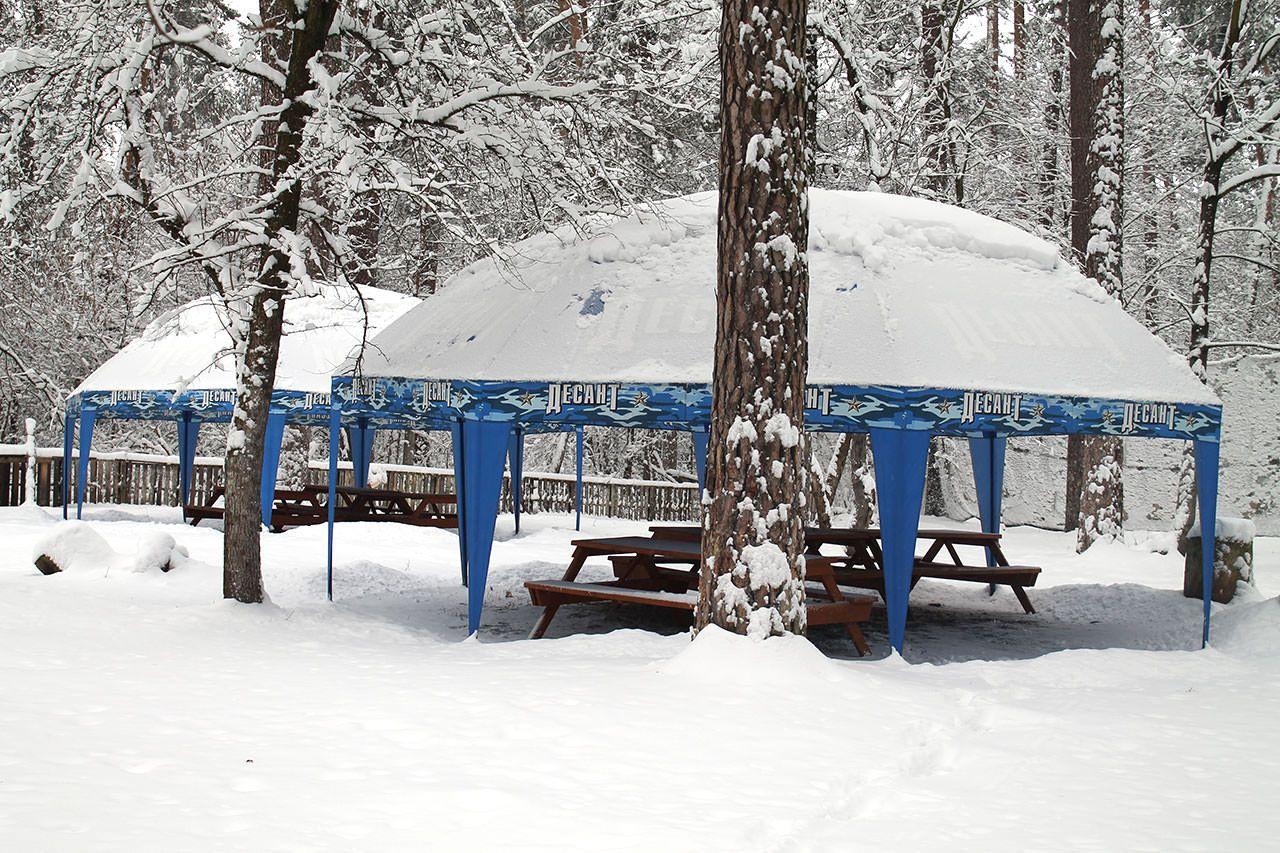 Зимние эскизы - фото 4